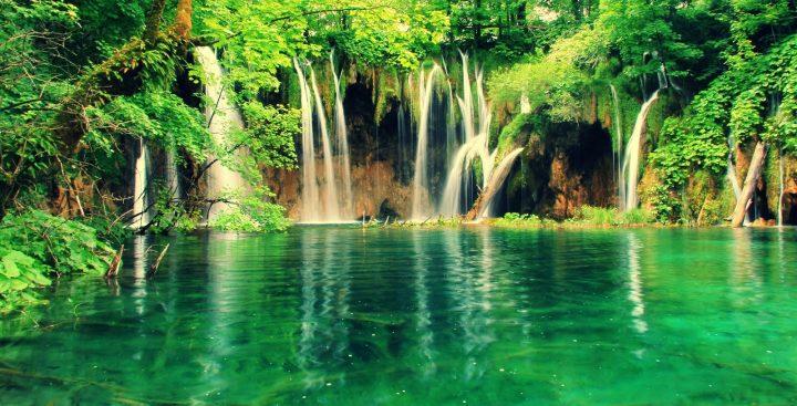 cuidemos el medio ambiente verde lago